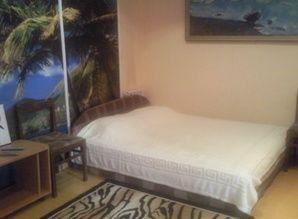 The apartment is on the street. Chekhov. 1 room studio with