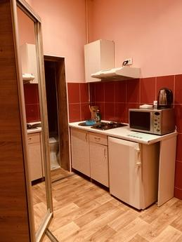 Apartment in the city center, Lviv - apartment by the day