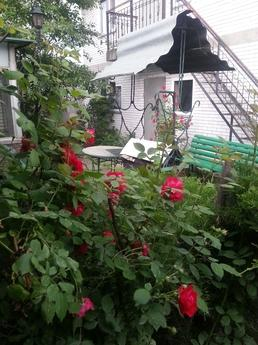 Rent a cottage Ukrainka 30 km from Kyiv, Obukhiv - apartment by the day