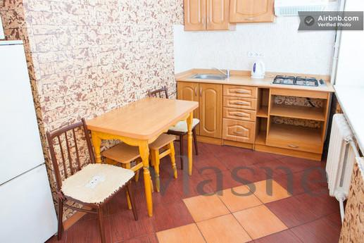 Great near the center. All inclusive., Kyiv - apartment by the day