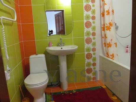 All amenities, Wi-Fi, Chernivtsi - apartment by the day