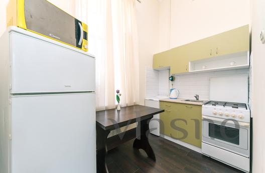 One-bedroom apartment in the center, Kyiv - apartment by the day